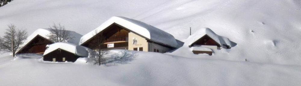 snow-288-10001.jpg